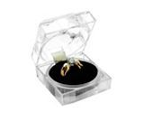 Crystal Glass box