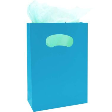 Matte Tote Bags Teal (Md.)